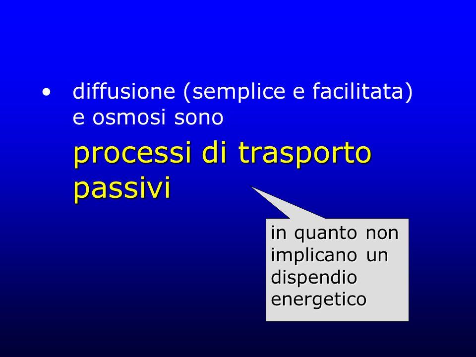 processi di trasporto passivi diffusione (semplice e facilitata) e osmosi sono in quanto non implicano un dispendio energetico