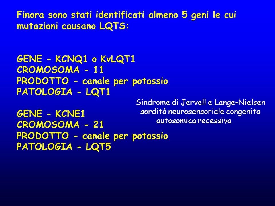 Finora sono stati identificati almeno 5 geni le cui mutazioni causano LQTS: GENE - KCNQ1 o KvLQT1 CROMOSOMA - 11 PRODOTTO - canale per potassio PATOLO