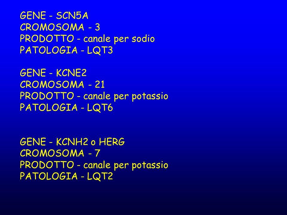 GENE - SCN5A CROMOSOMA - 3 PRODOTTO - canale per sodio PATOLOGIA - LQT3 GENE - KCNE2 CROMOSOMA - 21 PRODOTTO - canale per potassio PATOLOGIA - LQT6 GE