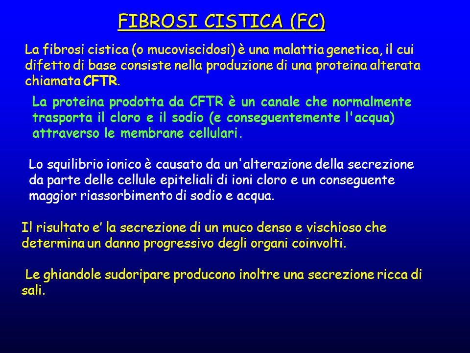 La fibrosi cistica (o mucoviscidosi) è una malattia genetica, il cui difetto di base consiste nella produzione di una proteina alterata chiamata CFTR.