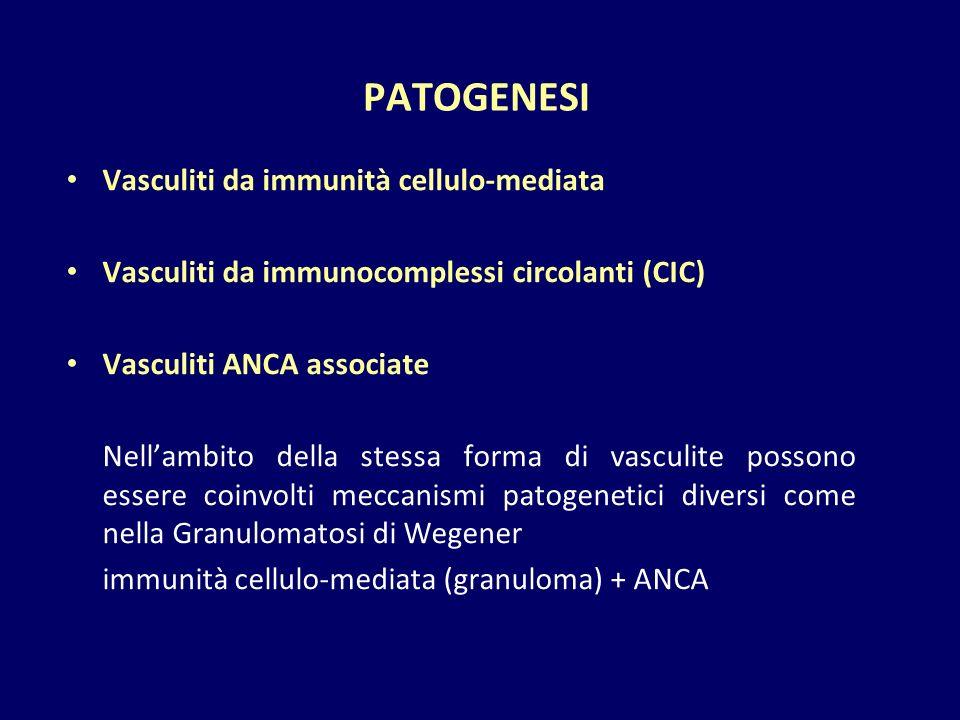 PATOGENESI Vasculiti da immunità cellulo-mediata Vasculiti da immunocomplessi circolanti (CIC) Vasculiti ANCA associate Nell'ambito della stessa forma