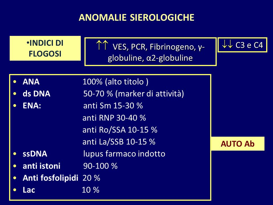 ANOMALIE SIEROLOGICHE ANA 100% (alto titolo ) ds DNA 50-70 % (marker di attività) ENA: anti Sm 15-30 % anti RNP 30-40 % anti Ro/SSA 10-15 % anti La/SS