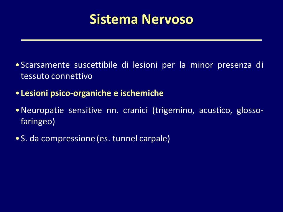 Sistema Nervoso Scarsamente suscettibile di lesioni per la minor presenza di tessuto connettivo Lesioni psico-organiche e ischemiche Neuropatie sensit