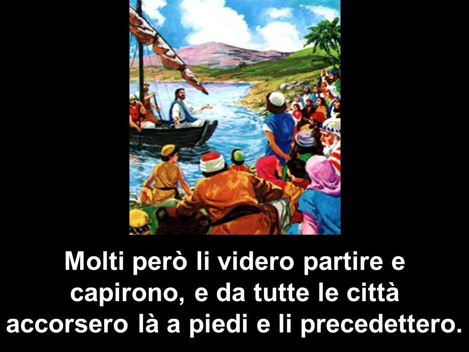 Sceso dalla barca, egli vide una grande folla, ebbe compassione di loro, perché erano come pecore che non hanno pastore,