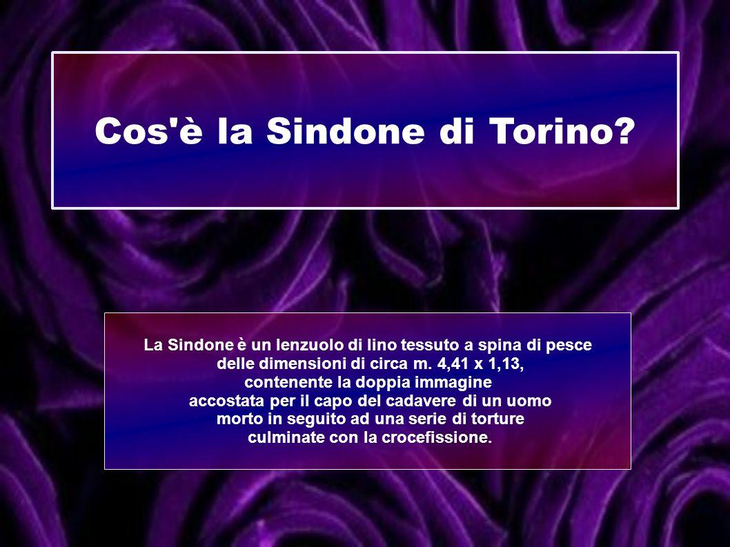 Cos'è la Sindone di Torino? La Sindone è un lenzuolo di lino tessuto a spina di pesce delle dimensioni di circa m. 4,41 x 1,13, contenente la doppia i