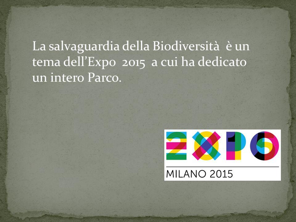 La salvaguardia della Biodiversità è un tema dell'Expo 2015 a cui ha dedicato un intero Parco.