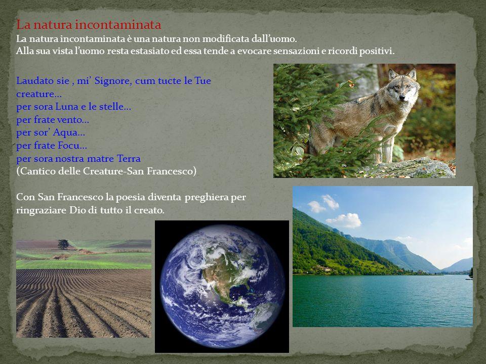 La natura incontaminata La natura incontaminata è una natura non modificata dall'uomo. Alla sua vista l'uomo resta estasiato ed essa tende a evocare s