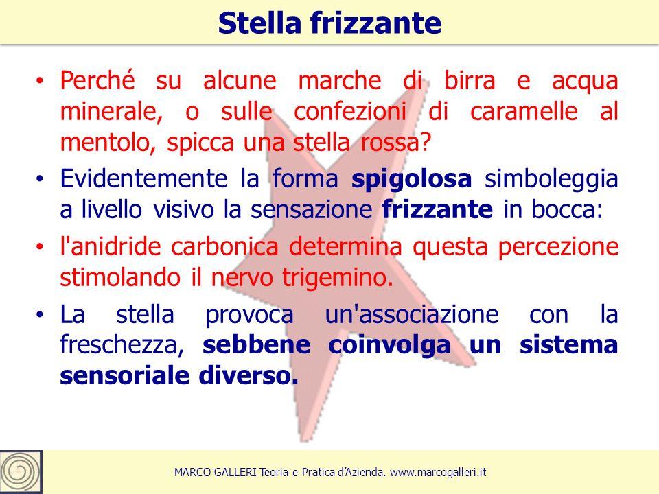 Stella frizzante 6 MARCO GALLERI Teoria e Pratica d'Azienda.
