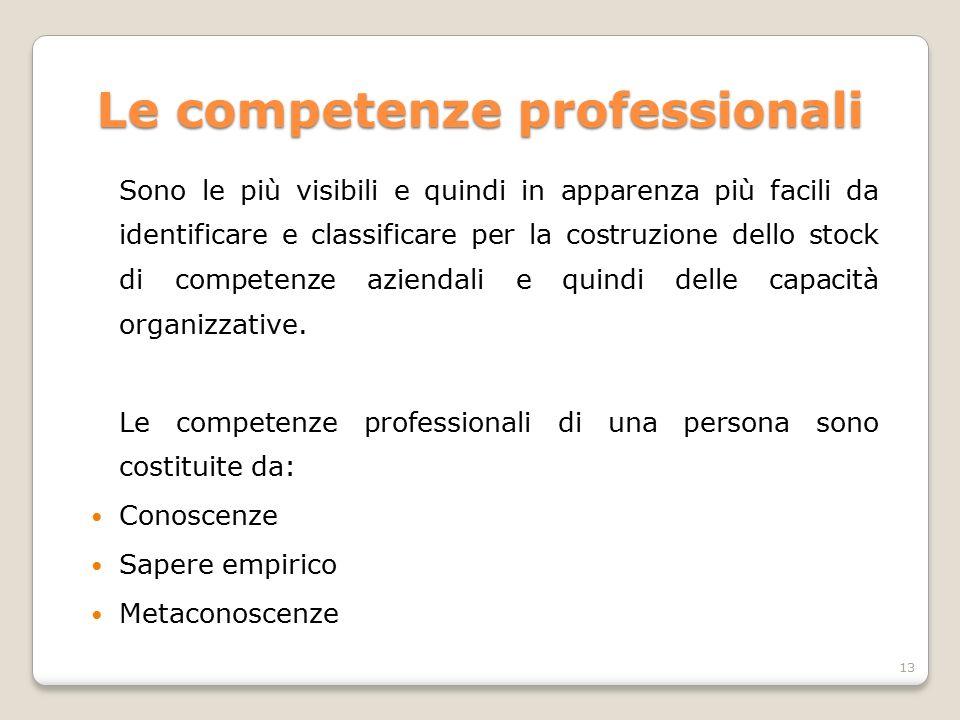 Le competenze professionali Sono le più visibili e quindi in apparenza più facili da identificare e classificare per la costruzione dello stock di com