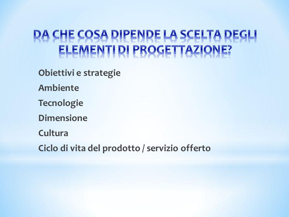 Obiettivi e strategie Ambiente Tecnologie Dimensione Cultura Ciclo di vita del prodotto / servizio offerto