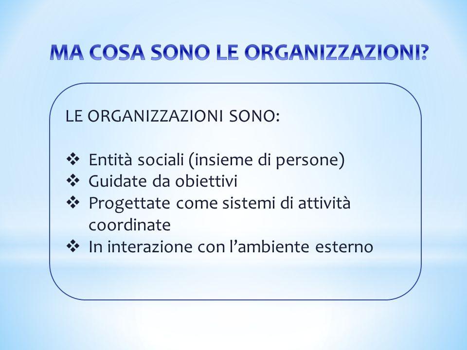LE ORGANIZZAZIONI SONO:  Entità sociali (insieme di persone)  Guidate da obiettivi  Progettate come sistemi di attività coordinate  In interazione
