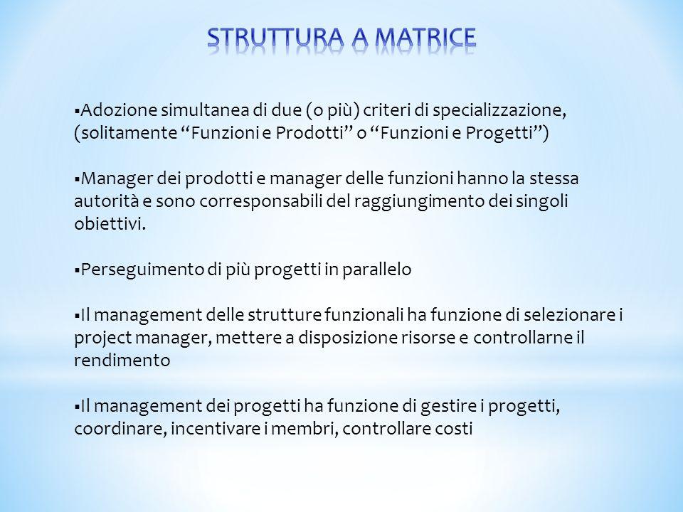 """ Adozione simultanea di due (o più) criteri di specializzazione, (solitamente """"Funzioni e Prodotti"""" o """"Funzioni e Progetti"""")  Manager dei prodotti e"""