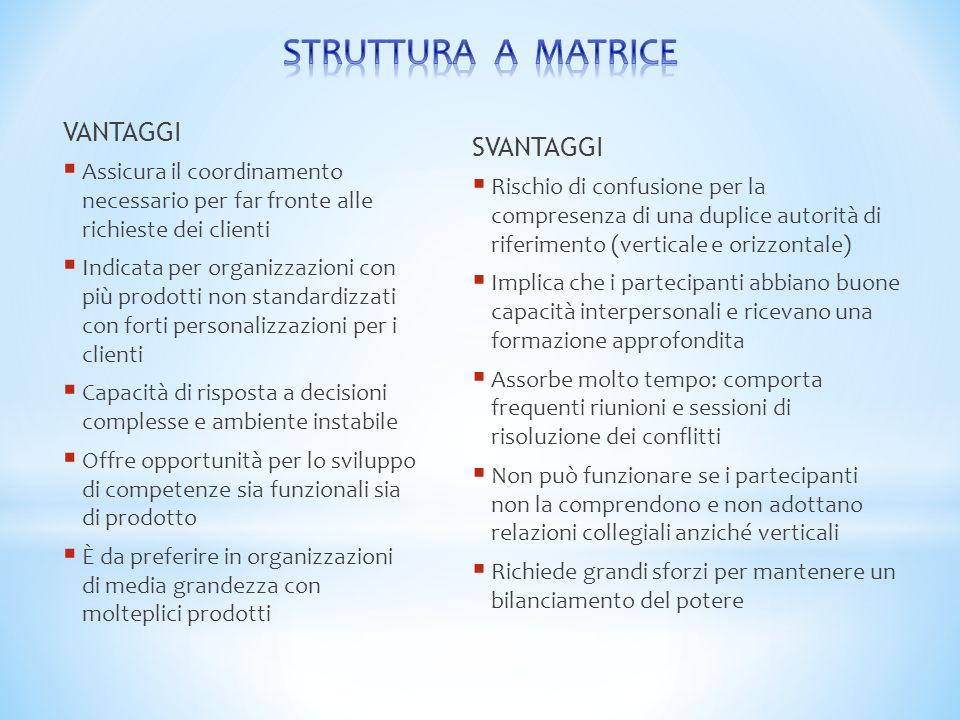 VANTAGGI  Assicura il coordinamento necessario per far fronte alle richieste dei clienti  Indicata per organizzazioni con più prodotti non standardi