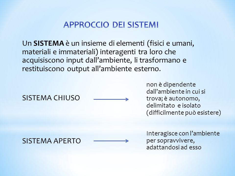 Un SISTEMA è un insieme di elementi (fisici e umani, materiali e immateriali) interagenti tra loro che acquisiscono input dall'ambiente, li trasforman