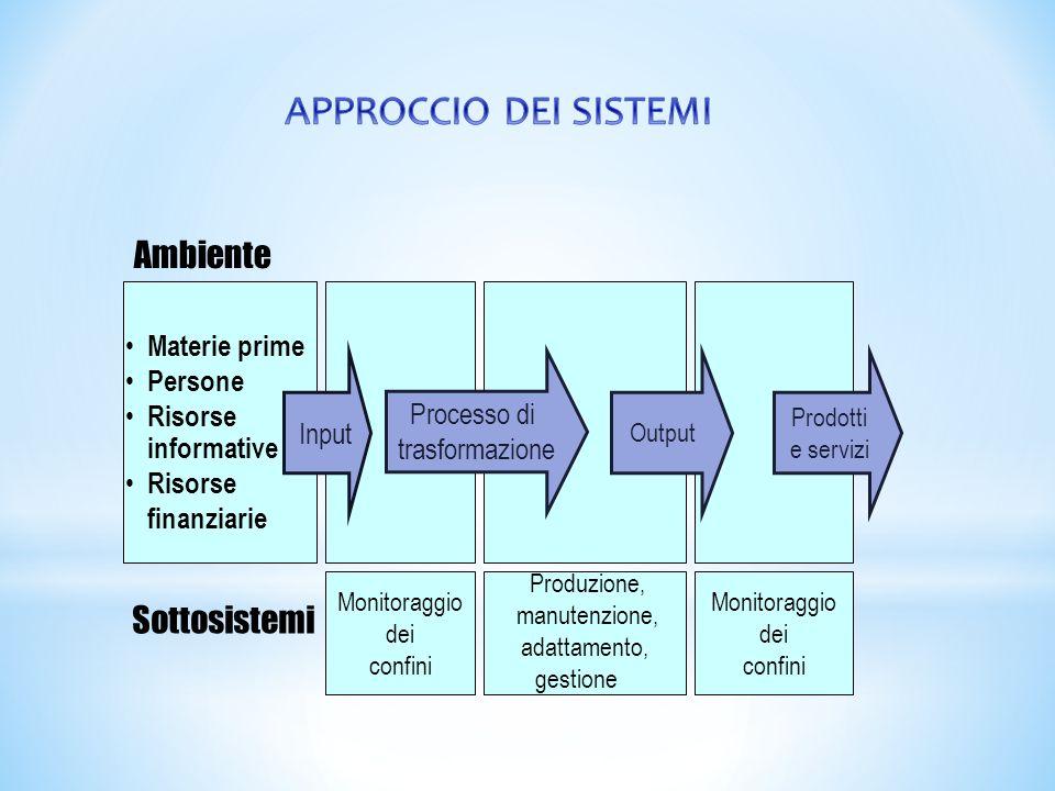 Prodotti e servizi Ambiente Materie prime Persone Risorse informative Risorse finanziarie Sottosistemi Monitoraggio dei confini Produzione, manutenzio