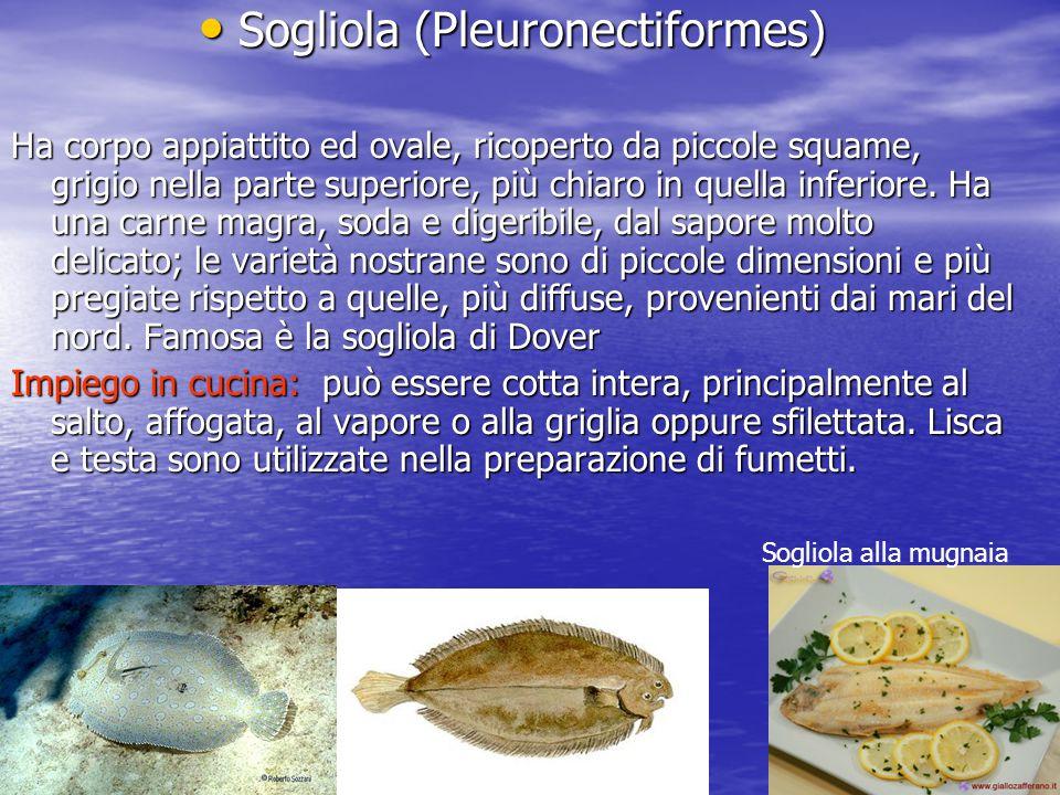 Sogliola (Pleuronectiformes) Sogliola (Pleuronectiformes) Ha corpo appiattito ed ovale, ricoperto da piccole squame, grigio nella parte superiore, più chiaro in quella inferiore.