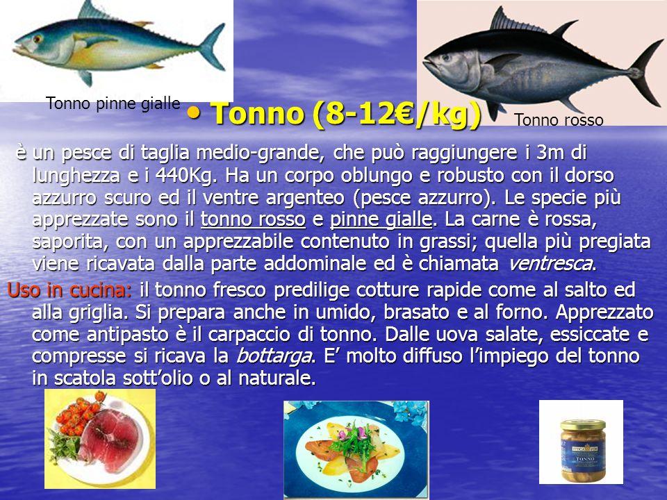 Tonno (8-12€/kg) Tonno (8-12€/kg) è un pesce di taglia medio-grande, che può raggiungere i 3m di lunghezza e i 440Kg.