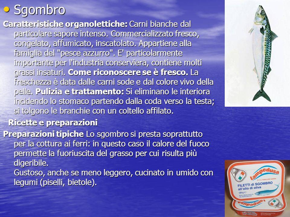 Sgombro Sgombro Caratteristiche organolettiche: Carni bianche dal particolare sapore intenso.