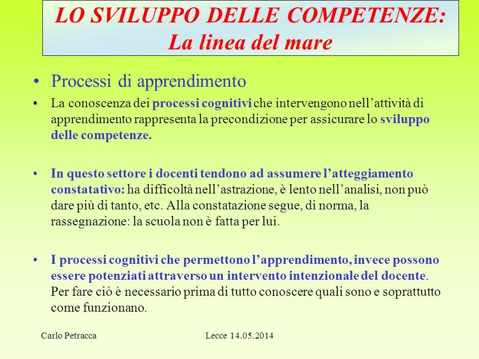 Lecce 14.05.2014 LO SVILUPPO DELLE COMPETENZE: La linea del mare Processi di apprendimento La conoscenza dei processi cognitivi che intervengono nell'