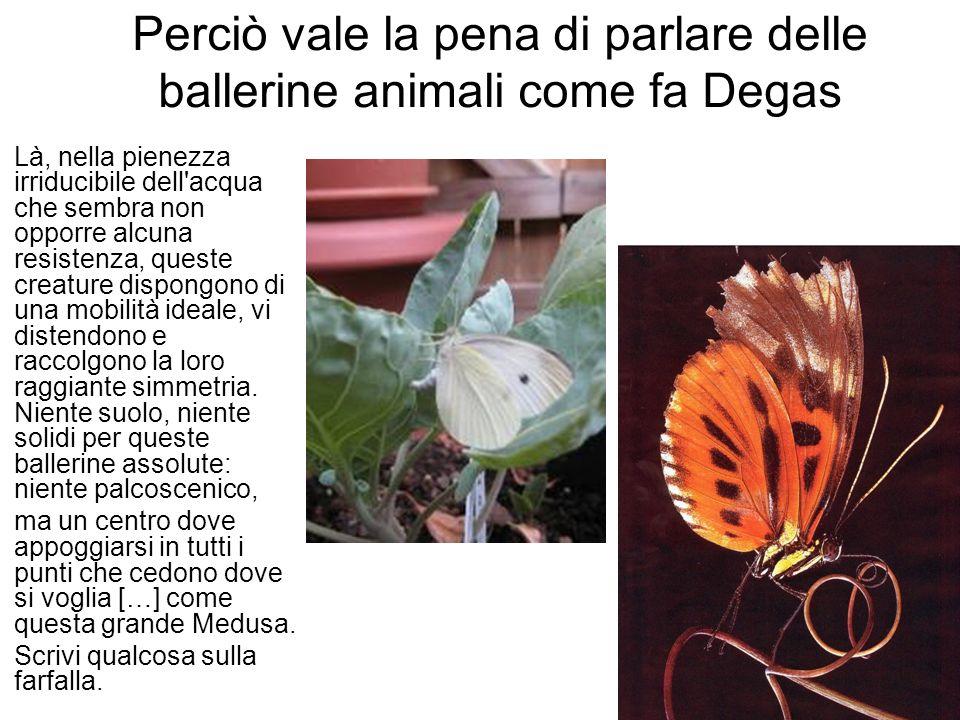Perciò vale la pena di parlare delle ballerine animali come fa Degas Là, nella pienezza irriducibile dell acqua che sembra non opporre alcuna resistenza, queste creature dispongono di una mobilità ideale, vi distendono e raccolgono la loro raggiante simmetria.