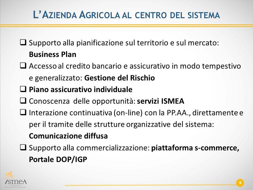 6 L'A ZIENDA A GRICOLA AL CENTRO DEL SISTEMA  Supporto alla pianificazione sul territorio e sul mercato: Business Plan  Accesso al credito bancario