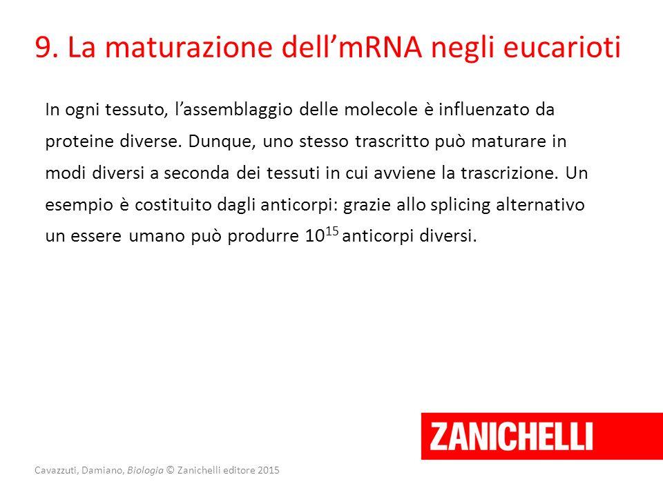 Cavazzuti, Damiano, Biologia © Zanichelli editore 2015 9. La maturazione dell'mRNA negli eucarioti In ogni tessuto, l'assemblaggio delle molecole è in