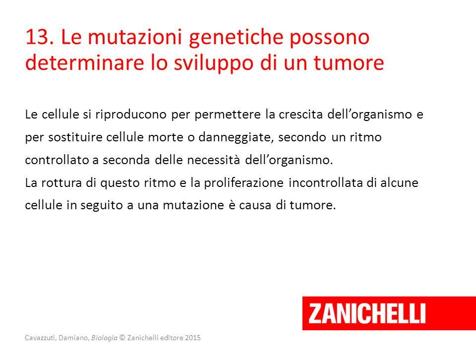 Cavazzuti, Damiano, Biologia © Zanichelli editore 2015 13. Le mutazioni genetiche possono determinare lo sviluppo di un tumore Le cellule si riproduco