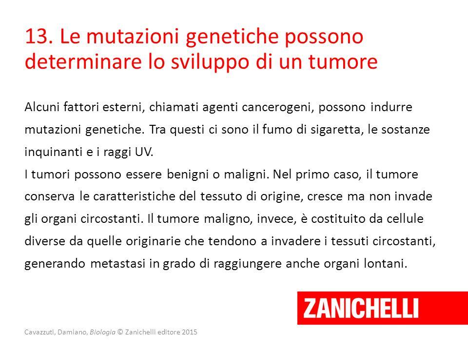 Cavazzuti, Damiano, Biologia © Zanichelli editore 2015 13. Le mutazioni genetiche possono determinare lo sviluppo di un tumore Alcuni fattori esterni,