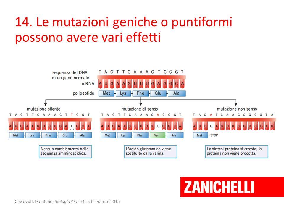 Cavazzuti, Damiano, Biologia © Zanichelli editore 2015 14. Le mutazioni geniche o puntiformi possono avere vari effetti