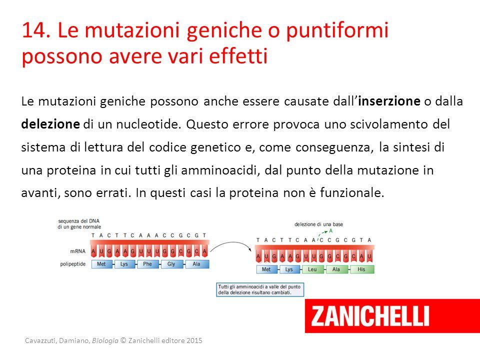 Cavazzuti, Damiano, Biologia © Zanichelli editore 2015 14. Le mutazioni geniche o puntiformi possono avere vari effetti Le mutazioni geniche possono a