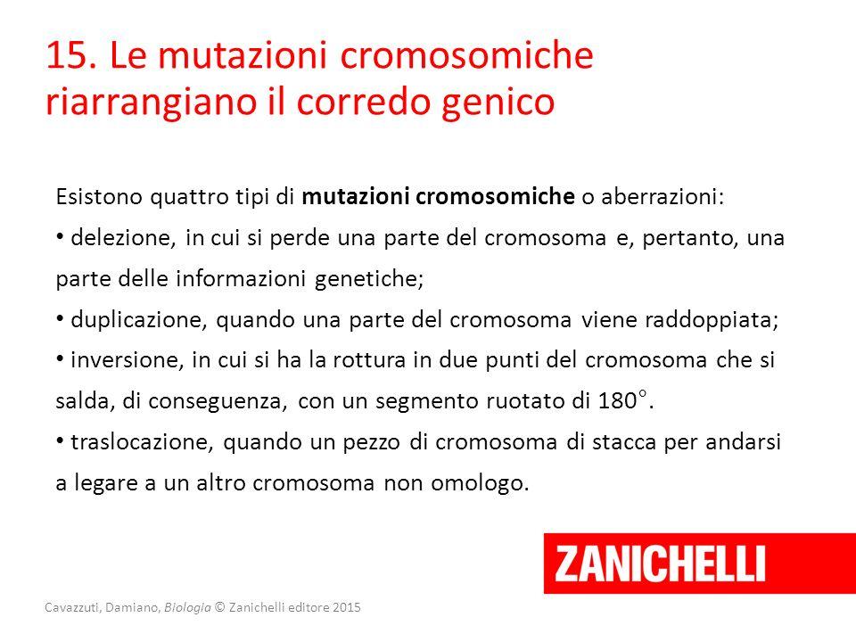 Cavazzuti, Damiano, Biologia © Zanichelli editore 2015 15. Le mutazioni cromosomiche riarrangiano il corredo genico Esistono quattro tipi di mutazioni