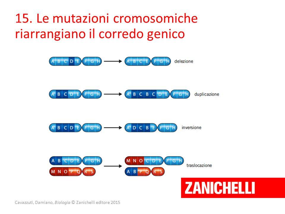 Cavazzuti, Damiano, Biologia © Zanichelli editore 2015 15. Le mutazioni cromosomiche riarrangiano il corredo genico