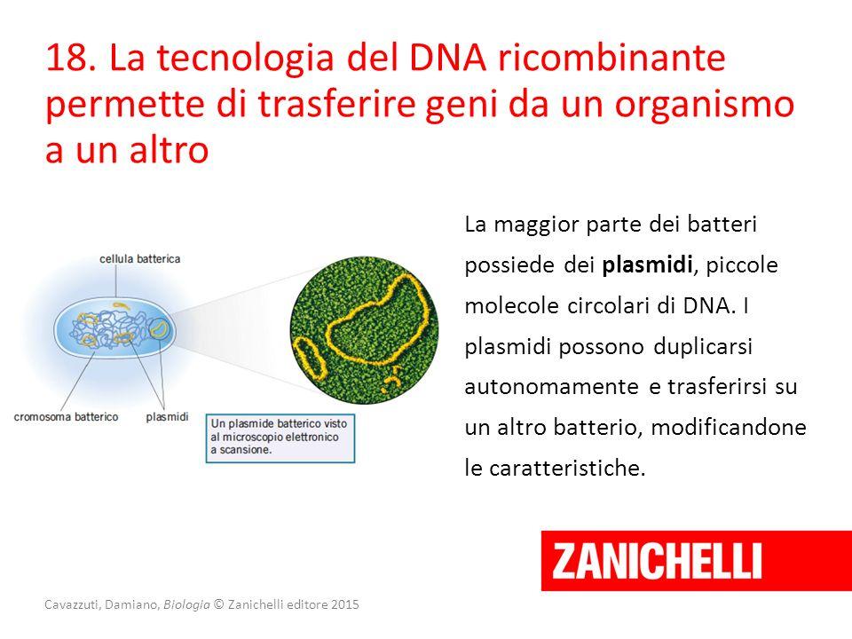 Cavazzuti, Damiano, Biologia © Zanichelli editore 2015 18. La tecnologia del DNA ricombinante permette di trasferire geni da un organismo a un altro L