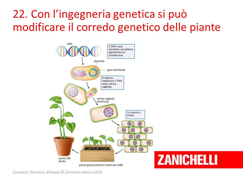 Cavazzuti, Damiano, Biologia © Zanichelli editore 2015 22. Con l'ingegneria genetica si può modificare il corredo genetico delle piante
