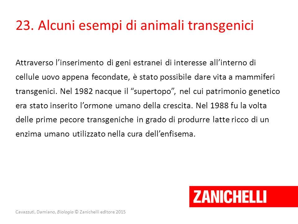 Cavazzuti, Damiano, Biologia © Zanichelli editore 2015 23. Alcuni esempi di animali transgenici Attraverso l'inserimento di geni estranei di interesse