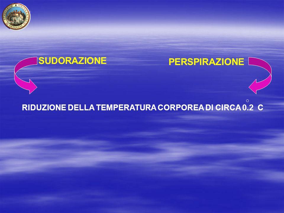 SUDORAZIONE PERSPIRAZIONE RIDUZIONE DELLA TEMPERATURA CORPOREA DI CIRCA 0.2 C