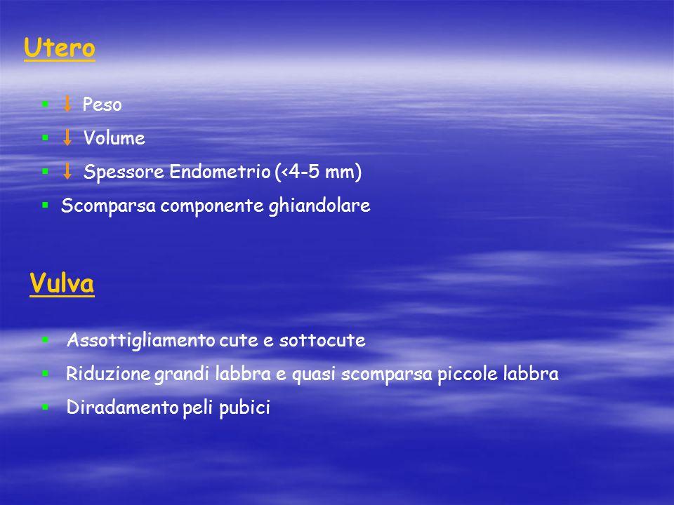Utero  Peso  Volume  Spessore Endometrio (<4-5 mm)  Scomparsa componente ghiandolare Vulva  Assottigliamento cute e sottocute  Riduzione grandi