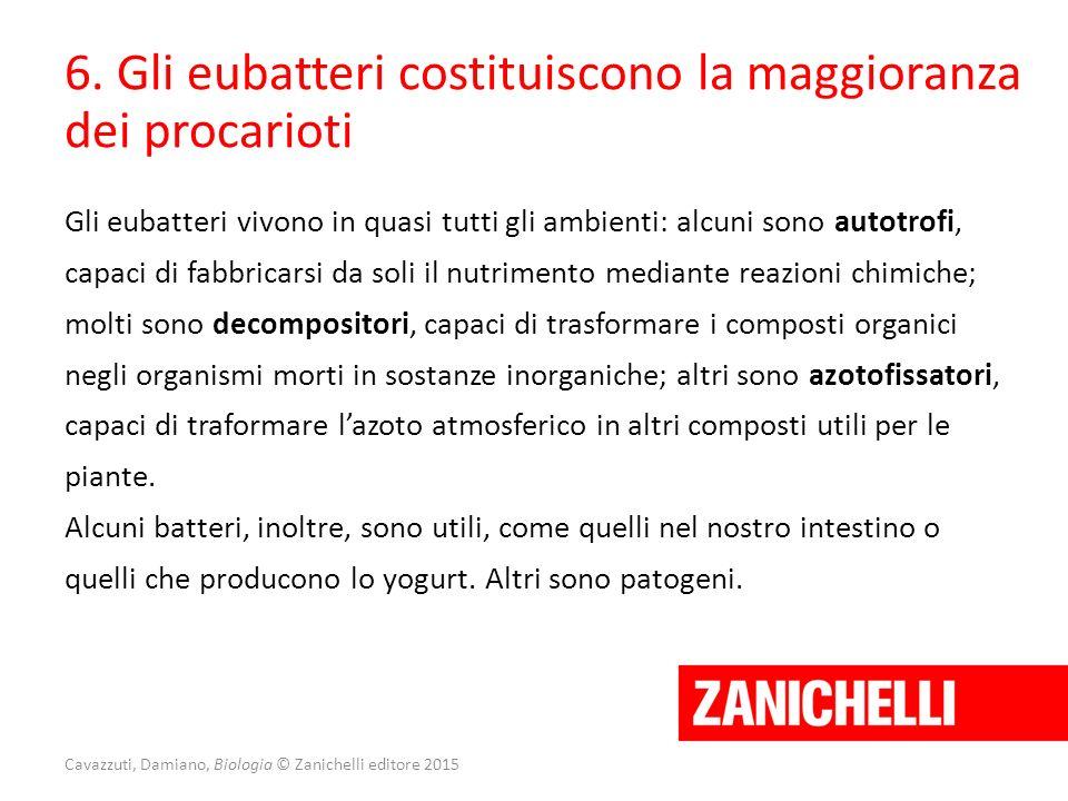 Cavazzuti, Damiano, Biologia © Zanichelli editore 2015 6. Gli eubatteri costituiscono la maggioranza dei procarioti Gli eubatteri vivono in quasi tutt