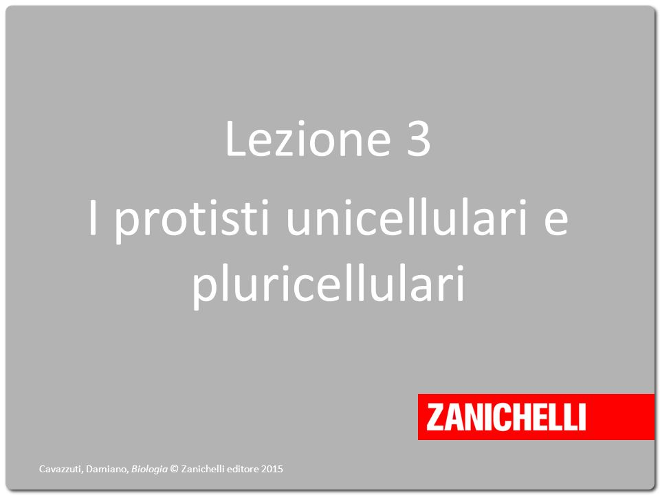 Lezione 3 I protisti unicellulari e pluricellulari Cavazzuti, Damiano, Biologia © Zanichelli editore 2015