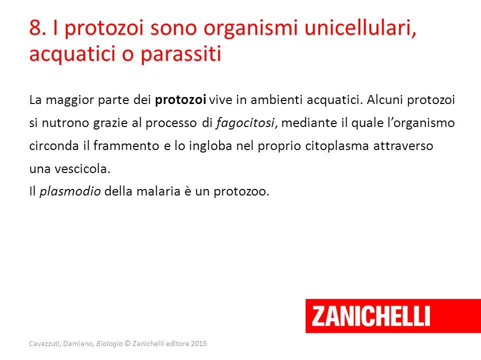 Cavazzuti, Damiano, Biologia © Zanichelli editore 2015 8. I protozoi sono organismi unicellulari, acquatici o parassiti La maggior parte dei protozoi