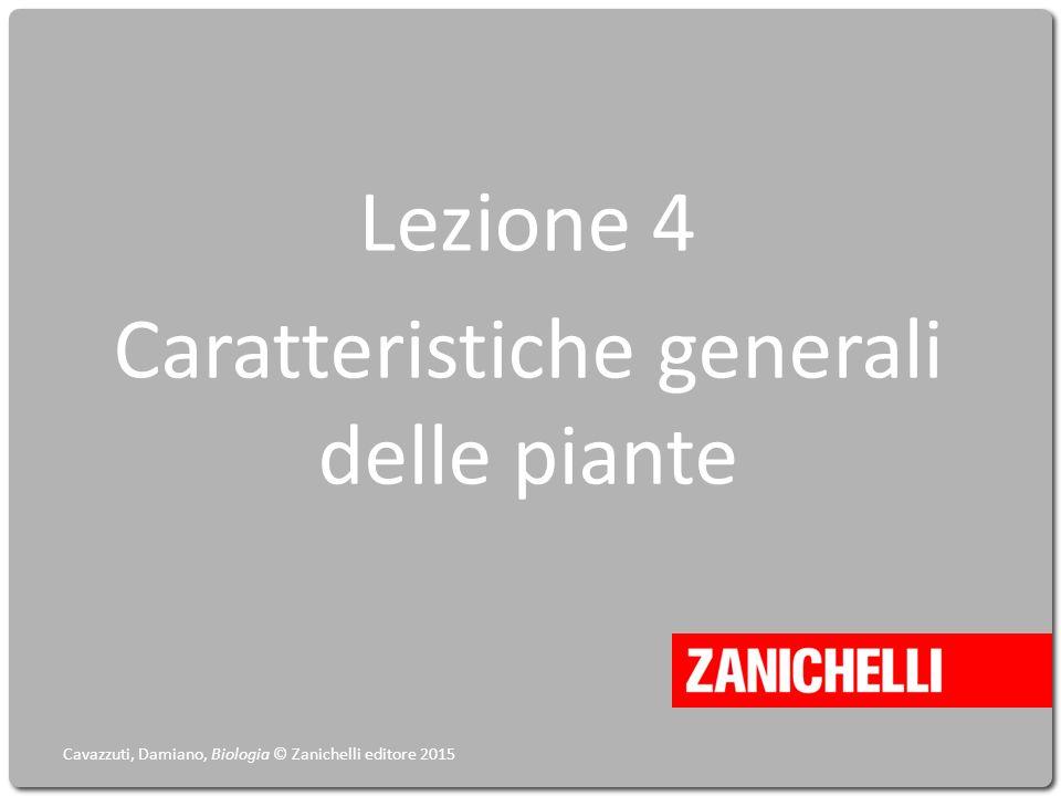 Lezione 4 Caratteristiche generali delle piante Cavazzuti, Damiano, Biologia © Zanichelli editore 2015