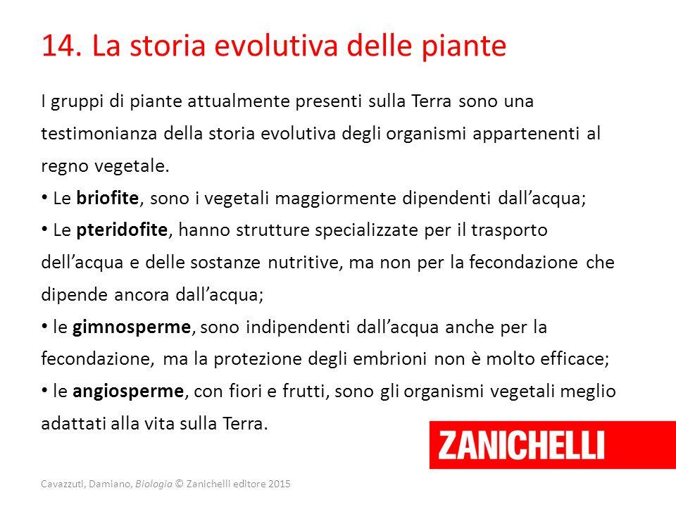 Cavazzuti, Damiano, Biologia © Zanichelli editore 2015 14. La storia evolutiva delle piante I gruppi di piante attualmente presenti sulla Terra sono u