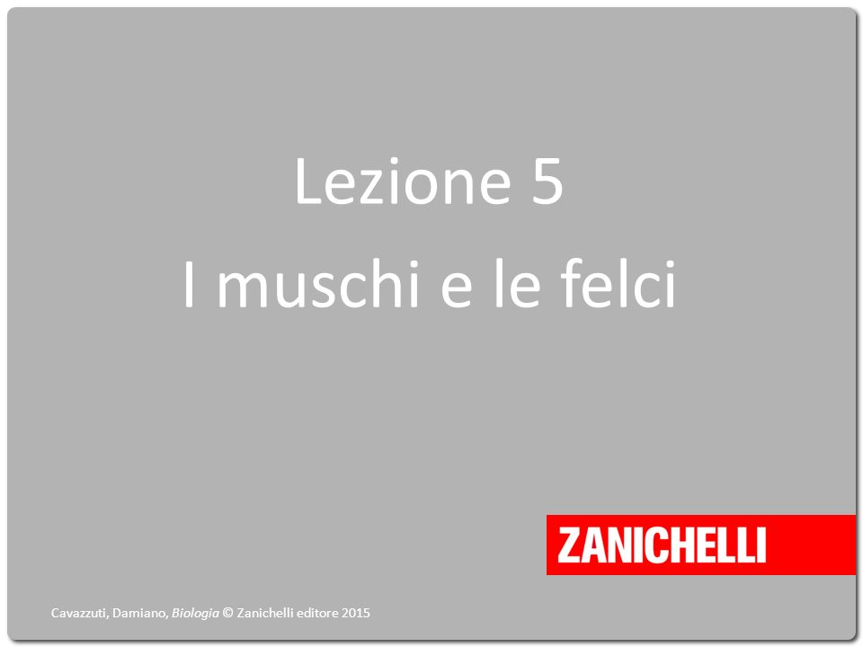 Lezione 5 I muschi e le felci Cavazzuti, Damiano, Biologia © Zanichelli editore 2015