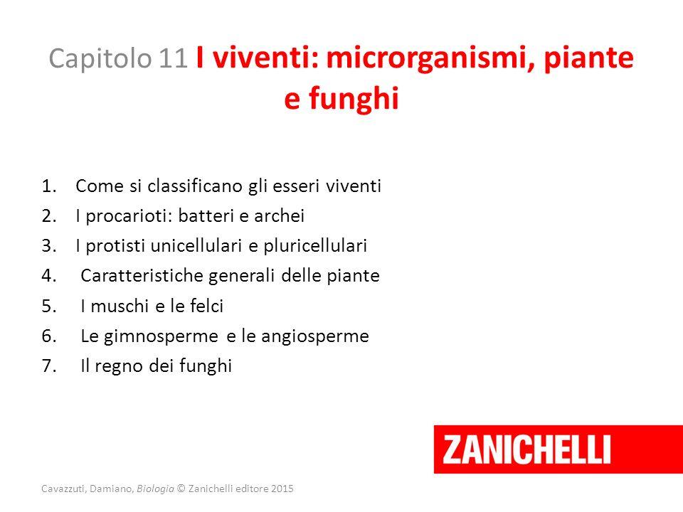 Capitolo 11 I viventi: microrganismi, piante e funghi 1.Come si classificano gli esseri viventi 2.I procarioti: batteri e archei 3.I protisti unicellu