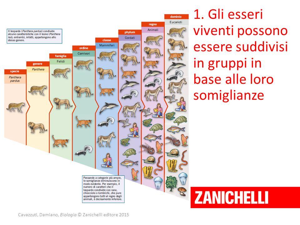 Cavazzuti, Damiano, Biologia © Zanichelli editore 2015 1. Gli esseri viventi possono essere suddivisi in gruppi in base alle loro somiglianze