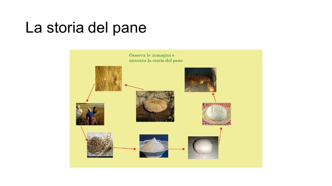 La storia del pane