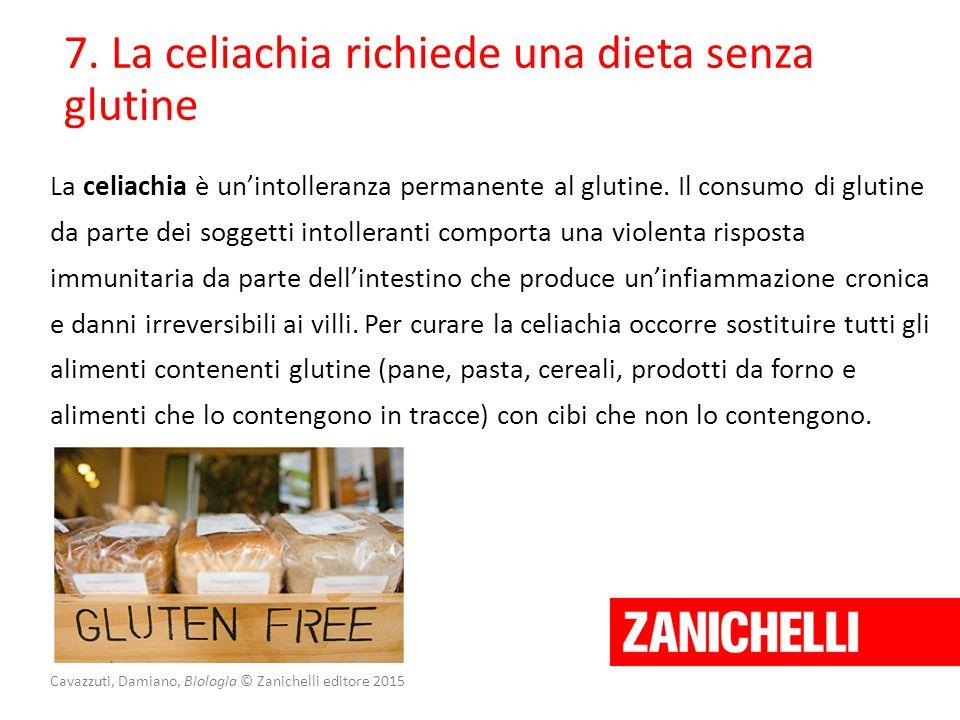 Cavazzuti, Damiano, Biologia © Zanichelli editore 2015 7. La celiachia richiede una dieta senza glutine La celiachia è un'intolleranza permanente al g