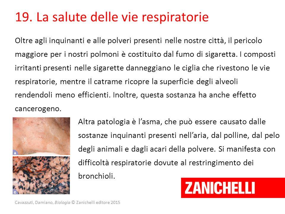 Cavazzuti, Damiano, Biologia © Zanichelli editore 2015 19. La salute delle vie respiratorie Oltre agli inquinanti e alle polveri presenti nelle nostre