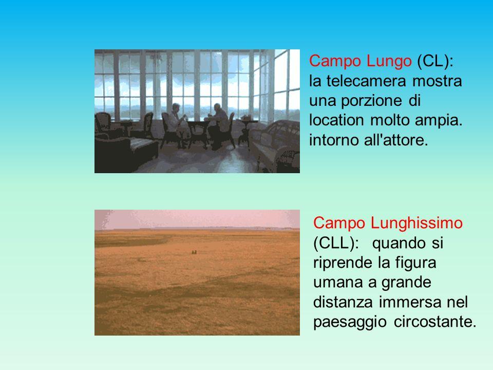 Campo Lungo (CL): la telecamera mostra una porzione di location molto ampia. intorno all'attore. Campo Lunghissimo (CLL): quando si riprende la figura