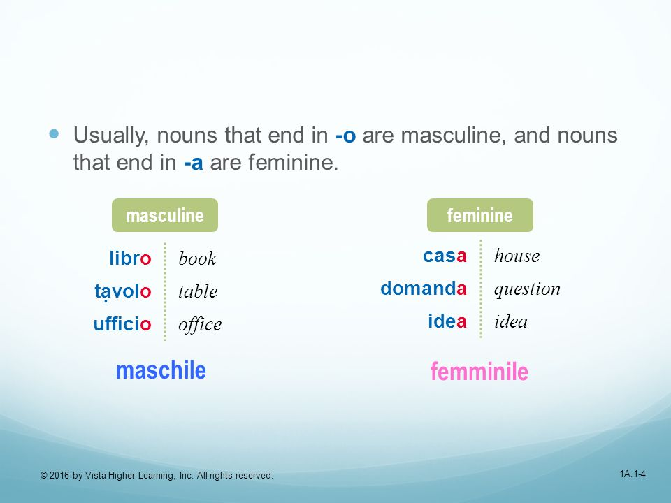 1A.1-4 Usually, nouns that end in -o are masculine, and nouns that end in -a are feminine.